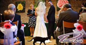 blackcatwedding